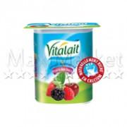 47 Vitalait Fruit bois