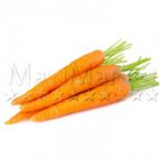 134-carotte