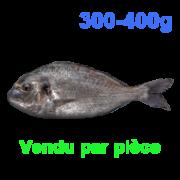 5-dourade-300-400