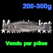 loup-200-300